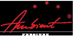 Pensiune Ambient Logo